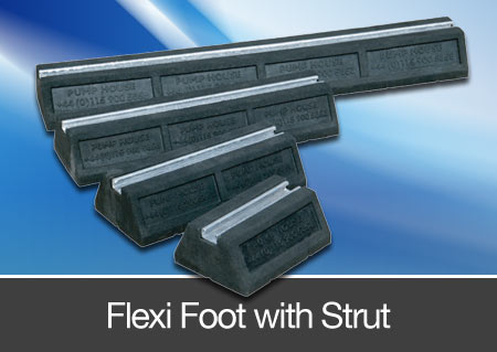 flexi foot with strut